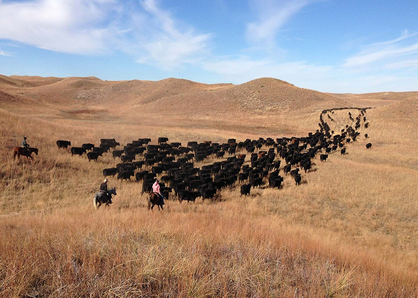 Nebraska's AL Ranch Listed - Drovers Magazine