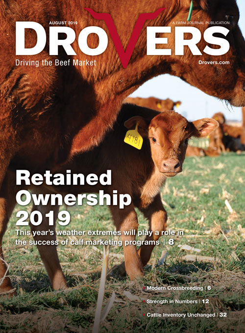 Drovers-Aug-2019