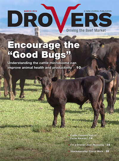 Drovers-Mar-2019
