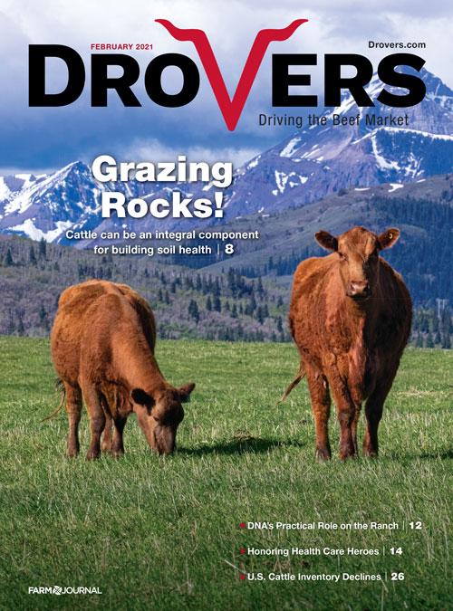 Drovers-Feb-2021