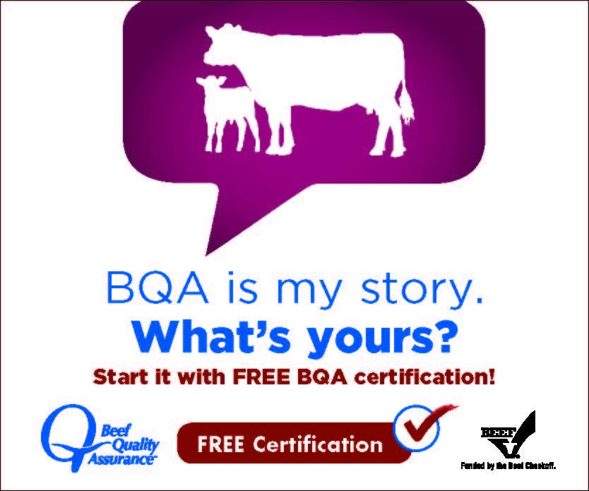 bqa certification register still