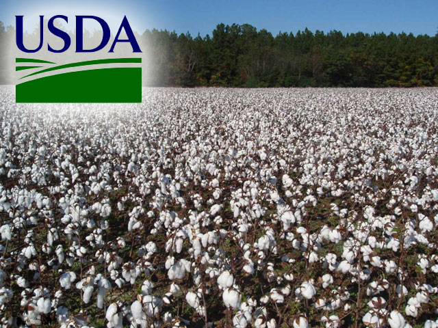 WASDE: U S  Cotton Exports Could Account for 31% of Global