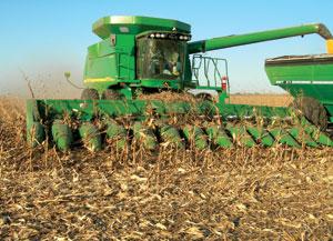 Corn Head Tune-Up - AgWeb