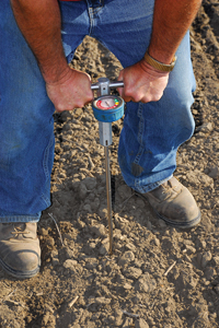 p20 Give Your Soil a Physical Exam 2