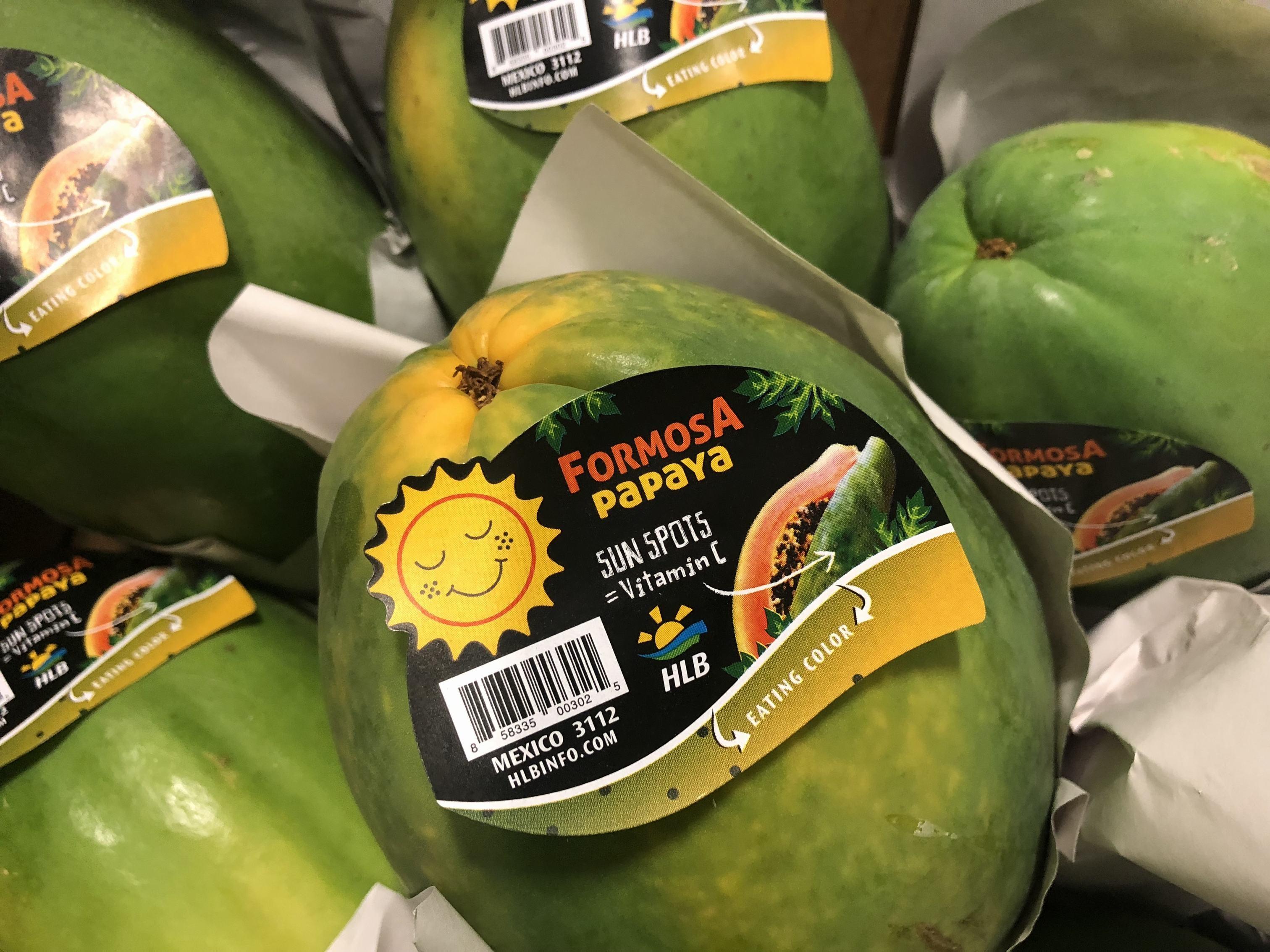 papaya ripening