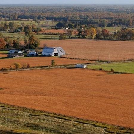 farmland michigan