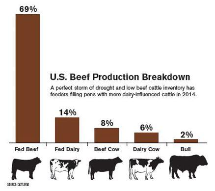 beef_production_breakdown_chart