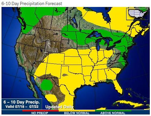 precip forecast