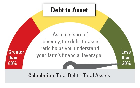 Debt to Asset