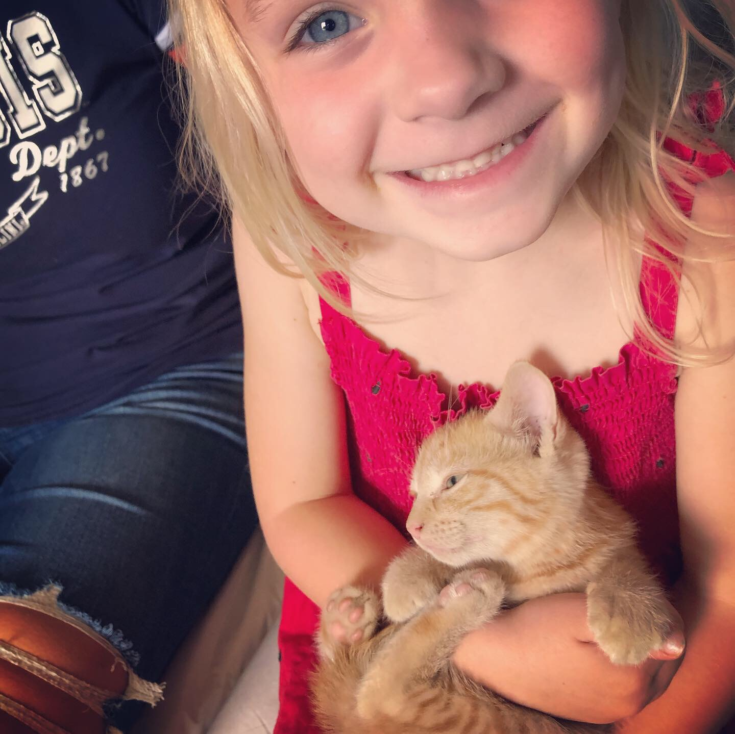 Harper and Kitten
