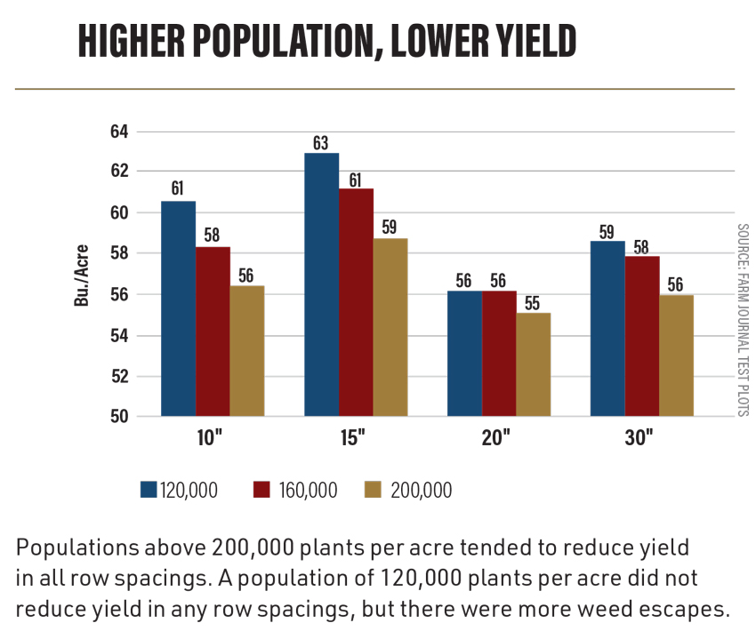 Higher Population, Lower Yield