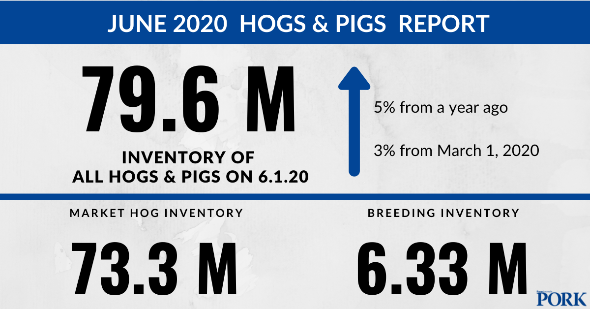 June Hogs and Pigs