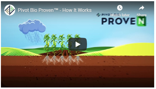 How Proven Works