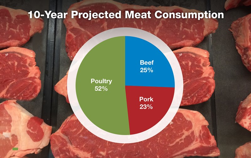 5-10-Year-Projected-Meat-Consumption