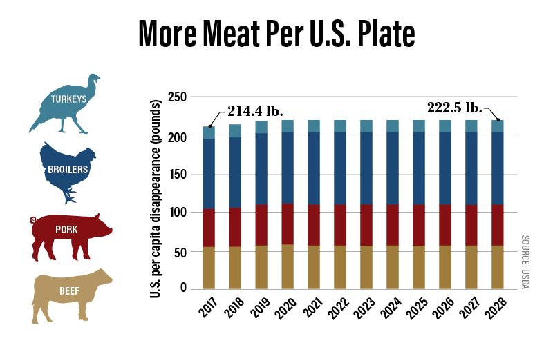 More Meat Per U.S. Plate