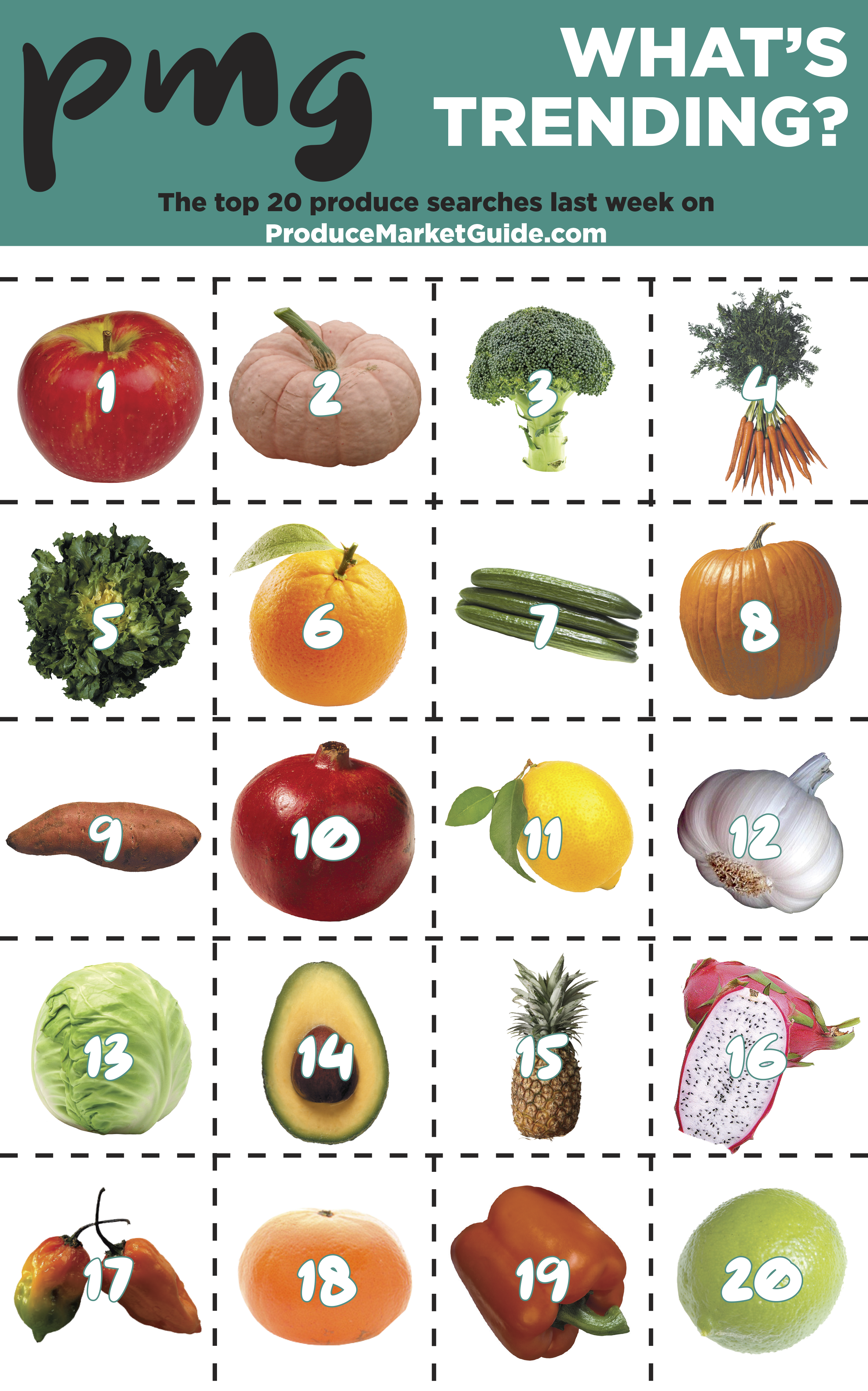 The top 20 fruit and vegetable searches on Produce Market Guide.