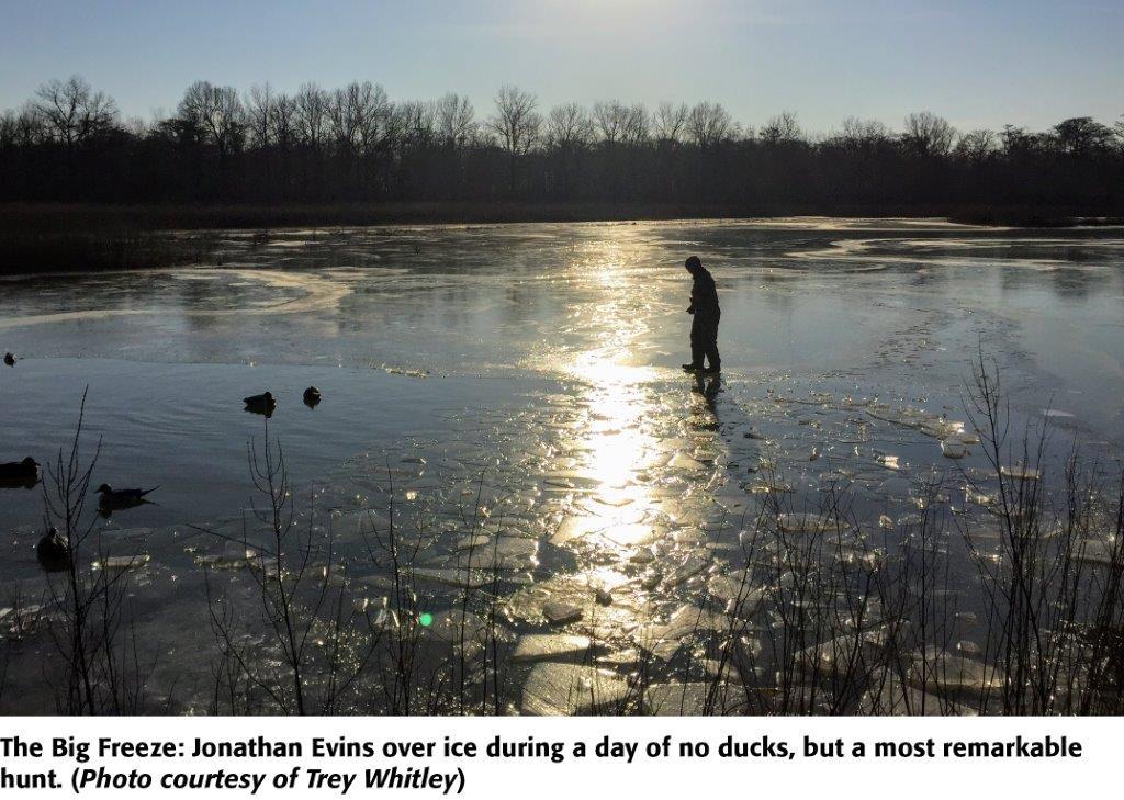 Frozen Dinosaur Farmer Finds Huge Alligator Snapping Turtle Under Ice Agweb