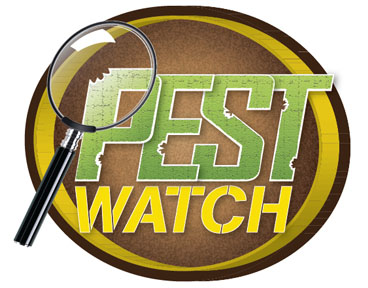 PestWatch