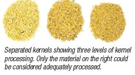 Seperated Kernels