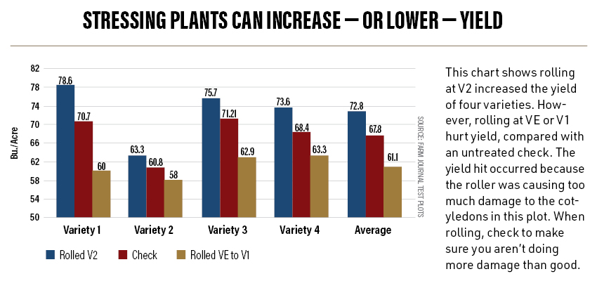 Stressing Plants Can Increase or Lower Yield
