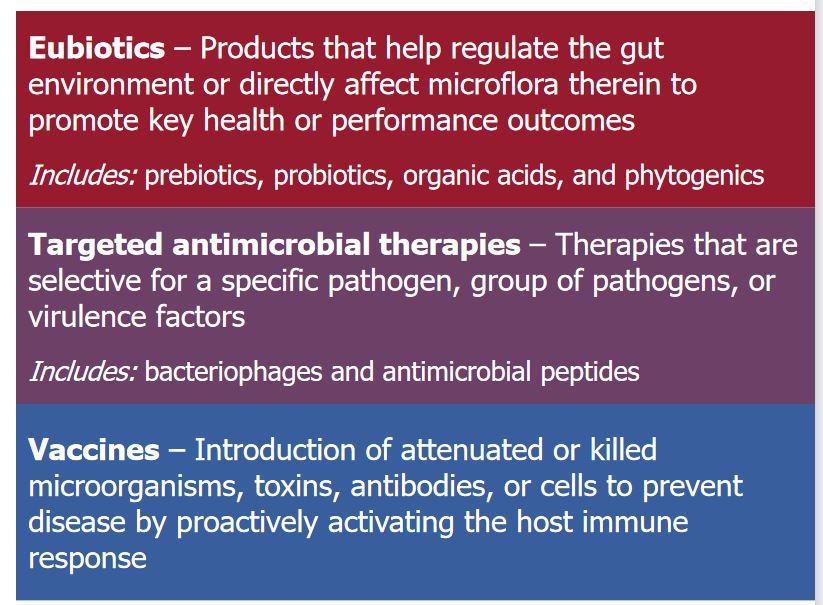 Three alternatives to antibiotics