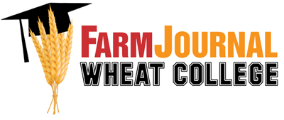 Wheat College