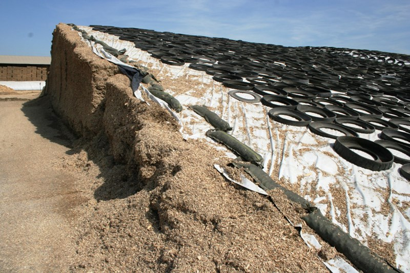Silage_pile_open_face_-_Ron_Kuber_4-09_118_