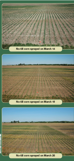 Cover Crops pC29
