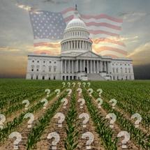 p13 Farm Bill Uncertain