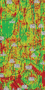 Pioneer FIT yieldmap