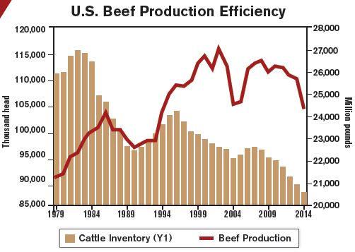 production_efficiency_chart