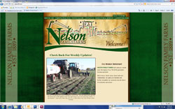 Nelsonff homepage