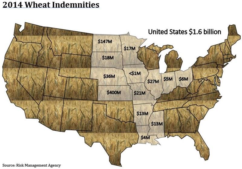 2014_Wheat_Indemnities