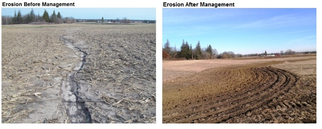 Farmland Forecast   After erosion issue mn fixed by colvin farm management marc schober cheney colvin top soil clay