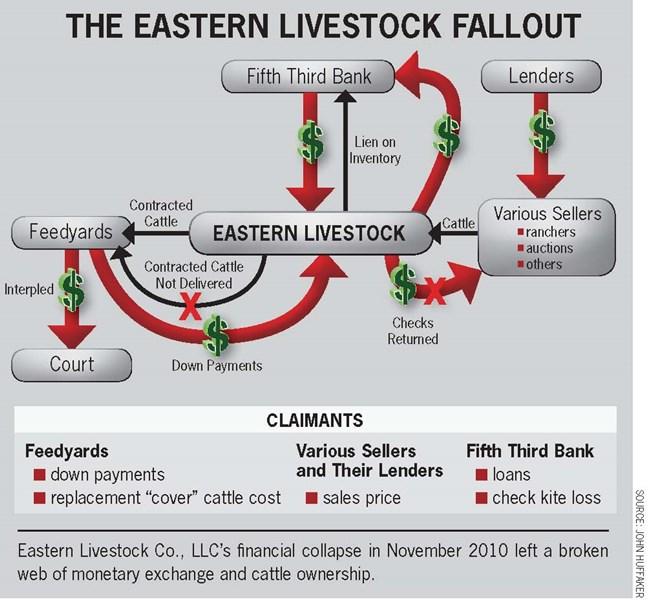eastern livestock fallout