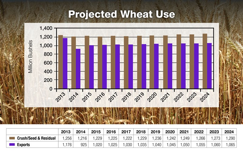 16-Projected-Wheat-Use