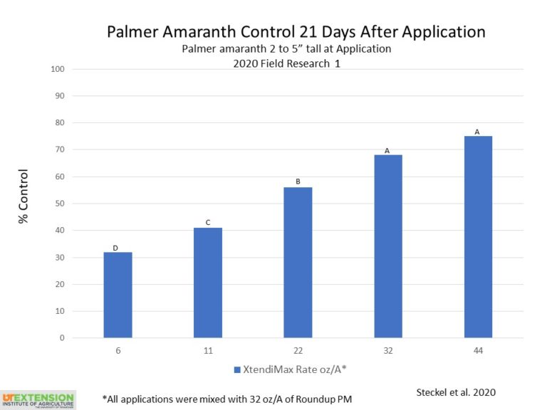 Dicamba rates and control