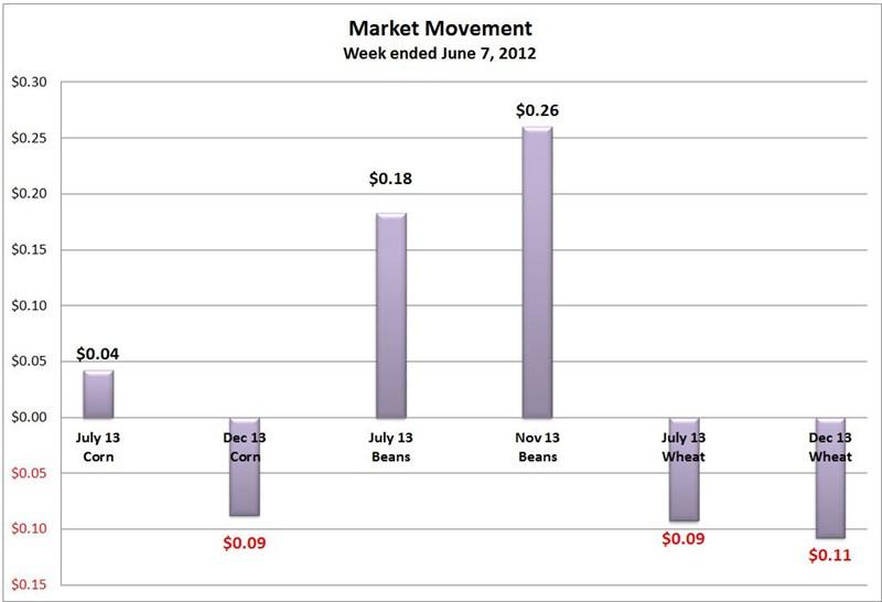 market move 0608