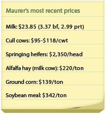 maurer_prices