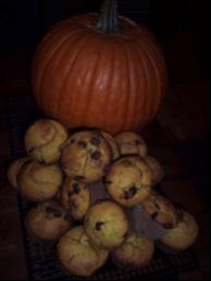 pumpkinchipmuffins