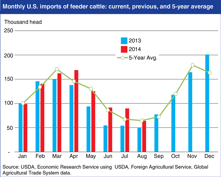 fri-monthly-us-imports-of-feeder-cattle