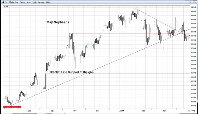 soybeans 04 19 11