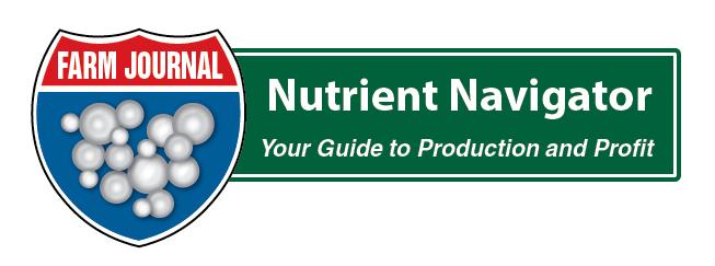 NutrientNavigator