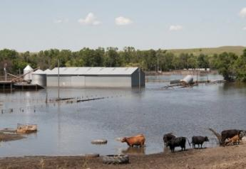 Flooding in North Dakota in 2019