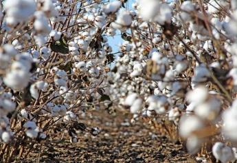 "Ed Barnes, senior director of Agriculture and Environmental Research at Cotton Incorporated, says technological change is occurring at a rapid pace. ""The technology to do all these things is already here,"" Barnes adds. ""We want to piece it together."""