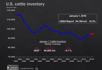 Sterling Marketing projects the January 1, 2020, cattle inventory will be 0.7% lower.
