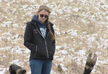 Kentucky State Police are investigating the shooting of two show cattle owned by Kyleigh Cline, Butler, KY.