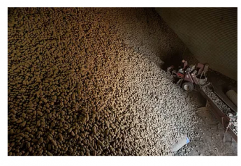 The organization has moved thousands of potatoes from the farm to people who need them.