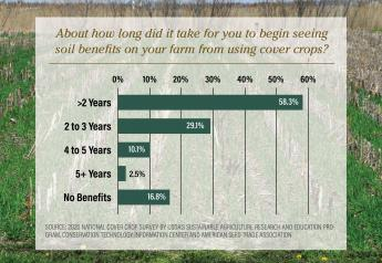 About how long did it take for you to begin seeing soil benefits on your farm from using cover crops?