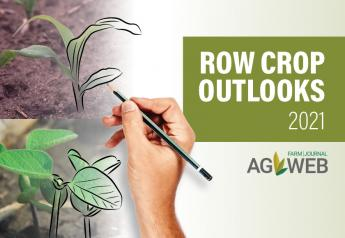 Row Crop Outlooks for 2021